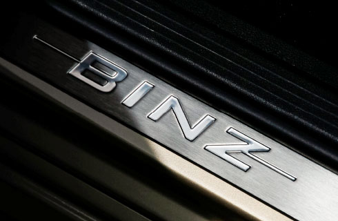 BINZ logo on car step